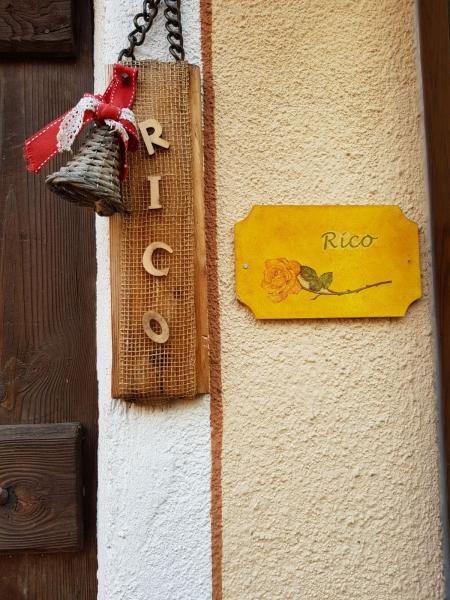 Rico-9